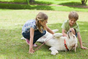 Full length of kids playing with pet dog at park